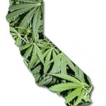 California Medical Marijuana Laws